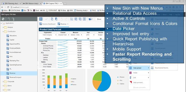 screenshot of TM1 Web